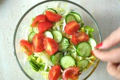 Sallad för ny grönsak med tomat-, gurka- och salladfrisee Fotografering för Bildbyråer