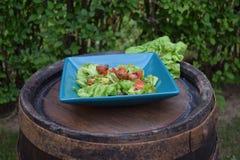 Sallad för ny grönsak, sund mat, tomater och salladsidor Sund feg sallad med nya grönsaker Royaltyfri Fotografi
