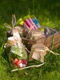 Sallad för picknick Fotografering för Bildbyråer
