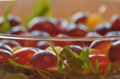 Sallad i en glass maträtt Raketsallad Royaltyfri Foto