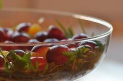 Sallad i en glass maträtt Raketsallad Arkivbild