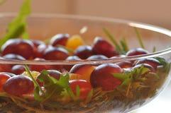 Sallad i en glass maträtt Raketsallad Arkivbilder