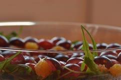 Sallad i en glass maträtt Raketsallad Arkivfoto
