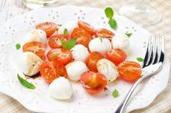 Sallad med den mini- mozzarellaen, körsbärsröda tomater och ny basilika Royaltyfria Bilder