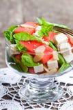 Sallad med den ny vattenmelon och feta med basilika- och spenatbetesmarken Royaltyfri Bild