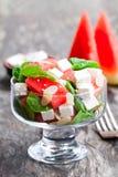 Sallad med den ny vattenmelon och feta med basilika- och spenatbetesmarken Royaltyfri Fotografi