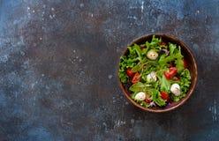 Sallad med den nya grönsallat, arugula, tomater och mozzarellaen Fotografering för Bildbyråer