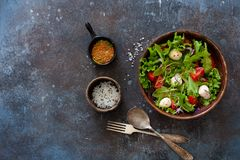 Sallad med den nya grönsallat, arugula, tomater och mozzarellaen Royaltyfri Bild