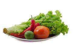 Sallad med grönsaker royaltyfri fotografi