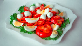 Sallad med körsbärsröda tomater och röda peppar och ägg royaltyfria foton