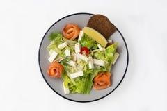 Sallad med laxen, ost och grönsallat krutonger arkivfoton