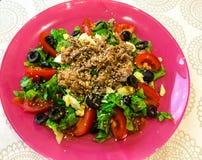 Sallad med nya grönsaker och på burk tonfisk royaltyfria foton