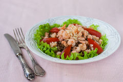 Sallad med räka, tomater och linser Royaltyfri Foto