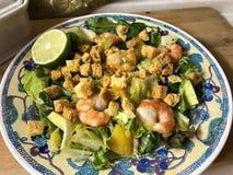 Sallad med tigerräkor, mango, avokadot och söt chili royaltyfri bild