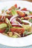 Sallad med tomater, gurkor, löken, bönor och tonfisksås Royaltyfri Fotografi