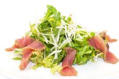 Sallad med tonfiskkött och grönsaker Fotografering för Bildbyråer