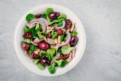 Sallad med vita bönor, tonfisk, oliv, röda lökar och torkade tomater med gröna grönsallatsidor arkivfoton