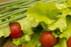 Sallad och tomat Fotografering för Bildbyråer