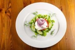 Sallad - tomat, gurka och lök Arkivbilder