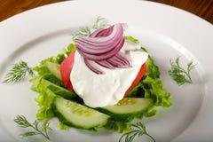 Sallad - tomat, gurka och lök Royaltyfri Foto