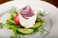 Sallad - tomat, gurka och lök Royaltyfri Fotografi