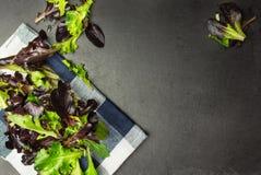 Salladblandning, olika grönsallatsidor på torkduken och texturerad backgrou arkivbild