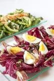 Sallader lax, organiska grönsaker, hårdkokta ägg Arkivfoto
