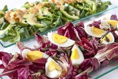 Sallader lax, organiska grönsaker, hårdkokta ägg Arkivbilder