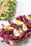 Sallader lax, organiska grönsaker, hårdkokta ägg Fotografering för Bildbyråer
