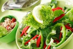 salladgrönsak Royaltyfri Foto