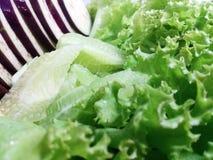 Salladnärbild för ny grönsak Arkivfoton