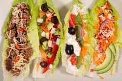 Salladsjal med grönsaken royaltyfria bilder