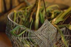 Salladslök i metallkorgen arkivfoto
