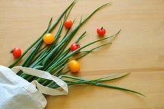 Salladslökar och körsbärsröda tomater är i ecopåsen fotografering för bildbyråer