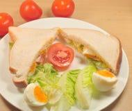Salladsmörgås Arkivfoto