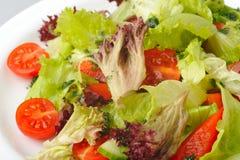 salladvegetarian Royaltyfria Bilder