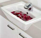 Salle de bains 1 Image stock