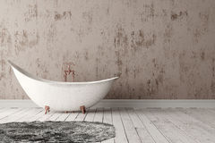 Salle de bains avec le tapis, le plancher en bois et le mur rugueux Image libre de droits