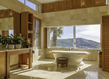 Salle de bains avec une vue Image libre de droits