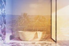 Salle de bains blanche et de marbre de mur, évier modifié la tonalité Photo stock