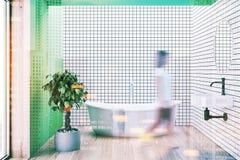 Salle de bains carrelée et verte de blanc, arbre modifié la tonalité Photographie stock