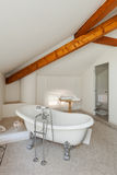 Salle de bains classique avec le baquet blanc Photo stock