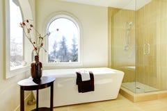 Salle de bains classique normale neuve de luxe. images libres de droits