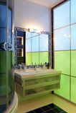 Salle de bains de Chamel?on Images stock