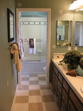 Salle de bains de fantaisie Photo stock