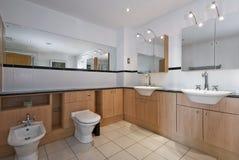 Salle de bains de luxe superbe Images libres de droits