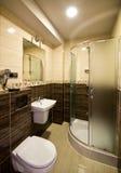 Salle de bains de thème de Brown photographie stock