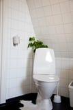 Salle de bains de toilette Images stock
