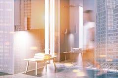 Salle de bains grise avec une douche, vue de côté modifiée la tonalité Image libre de droits