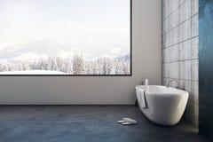 Salle de bains de luxe avec la vue panoramique illustration stock